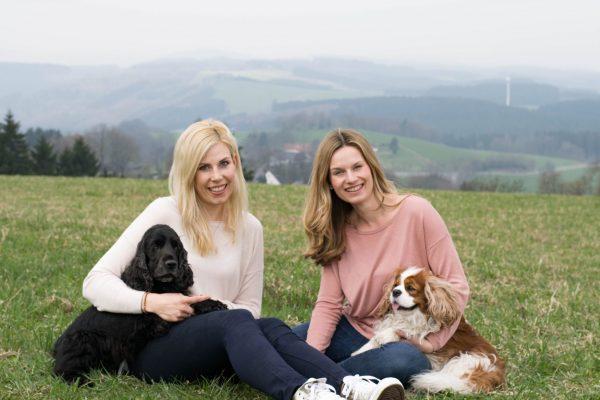 Goldhund im Sauerland
