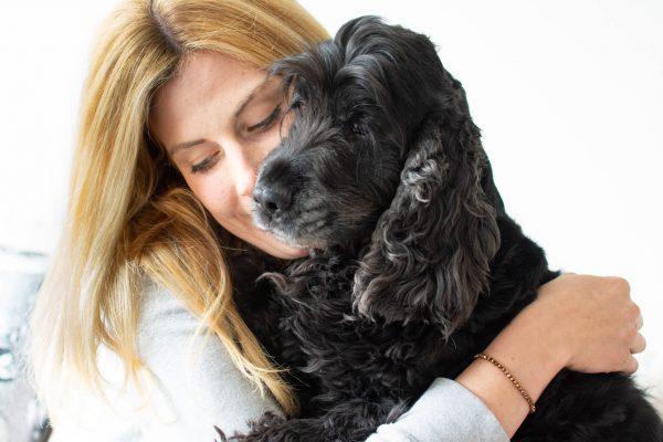 #höraufseinHerz – Herzerkrankungen beim Hund